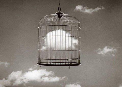 Quanto è attuale il dilemma del prigioniero?