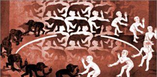 Memetica: quando la cultura incontra la biologia