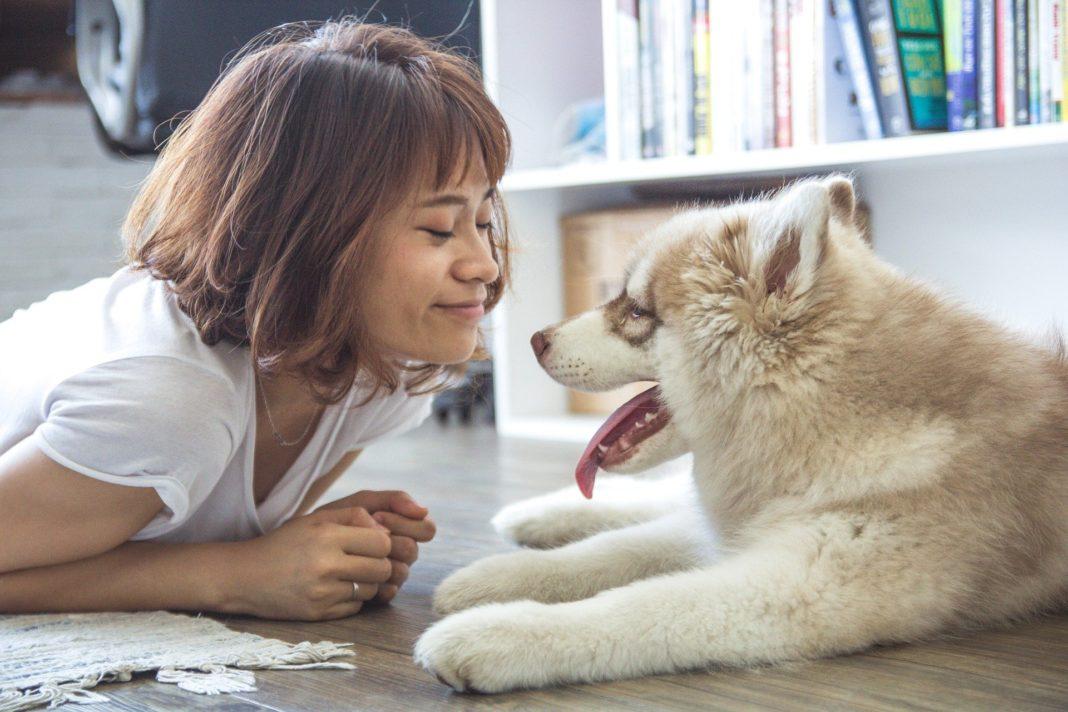 Altro che animali! Un viaggio all'interno della pet therapy