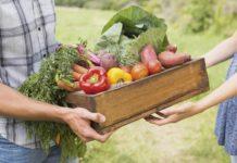 Nuove frontiere di consumo: i gruppi di acquisto solidali