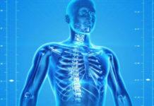 Il corpo tra biologia e sociologia