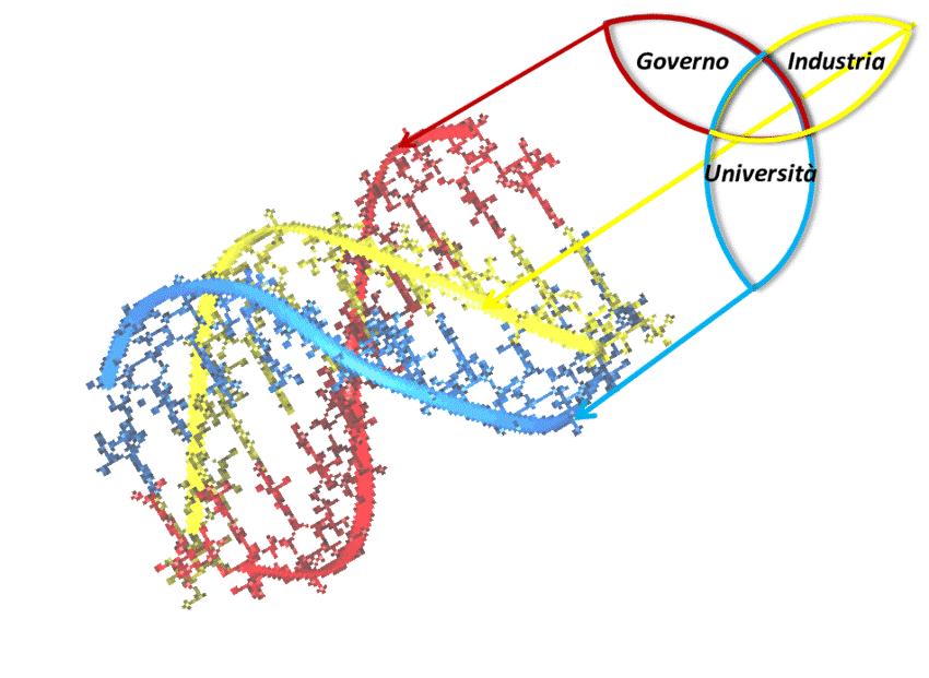 La teoria della tripla elica ipotizza che l'incremento di interazioni fra università, imprese e Stato porti a realizzare nuovi progetti e strategie innovative