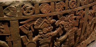 reperto da museo di antropologia