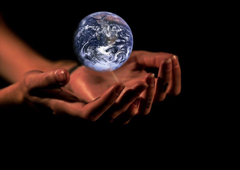 terra e mani