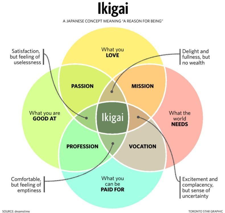 schema dell'ikigai di Marc Winn