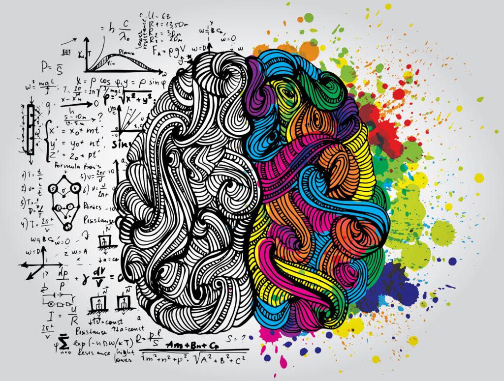 cervello_emozioni_razionalità