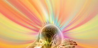 cervello_immaginazione_newage