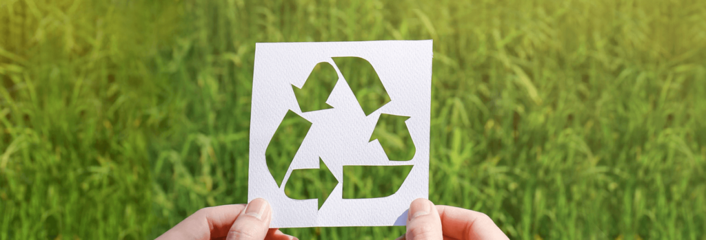 Verso il packaging ecologico