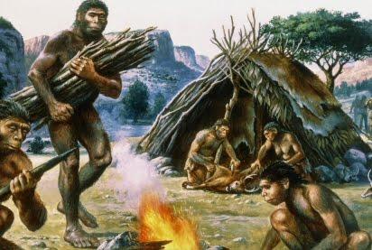 progenitori homo scimmia