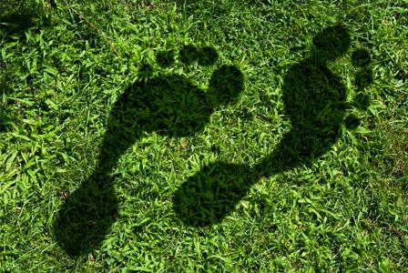 green forme piedi sostenibilità